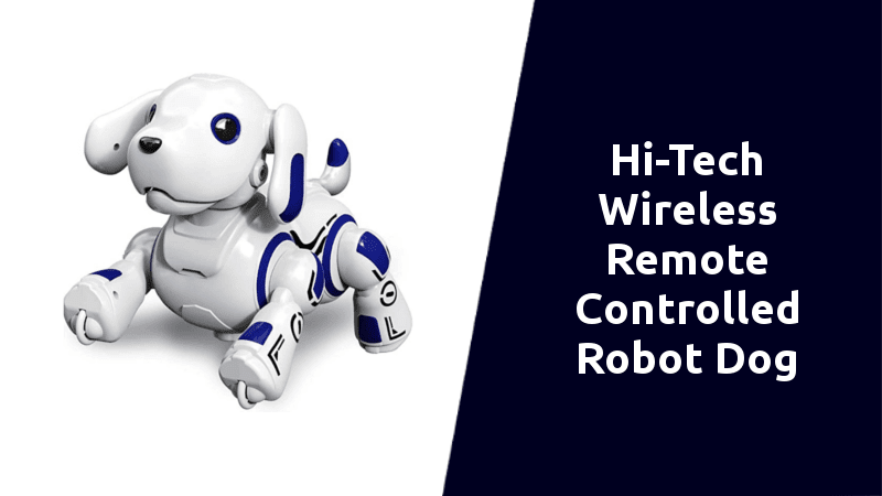 Hi-Tech Wireless Remote Controlled Robot Dog